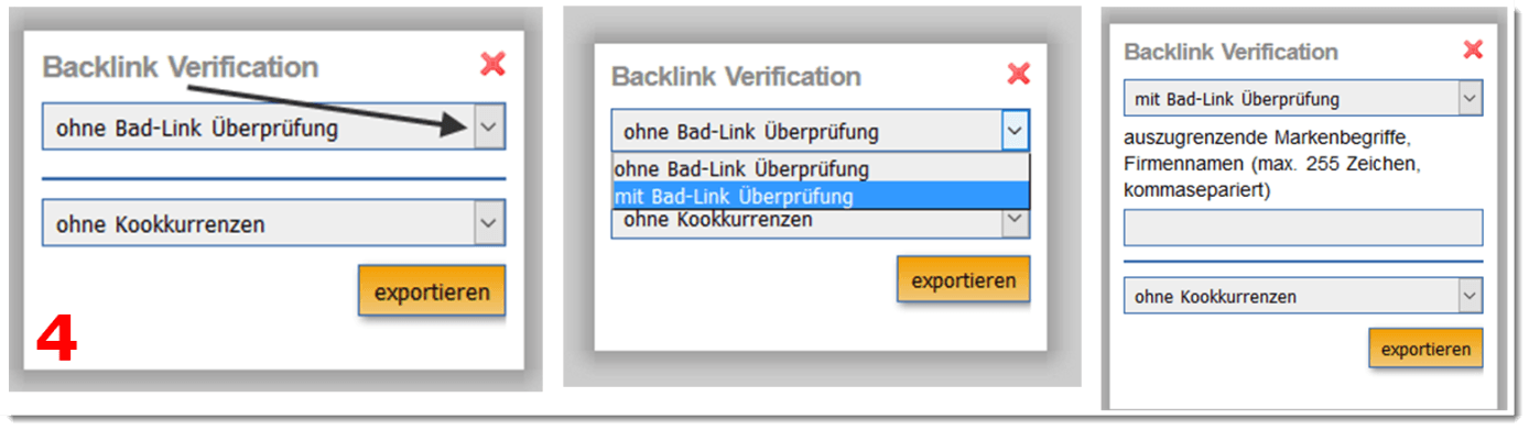 Anwendung Backlink Verification 2
